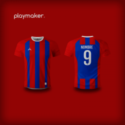 Camiseta Playmaker Rugby [AP]